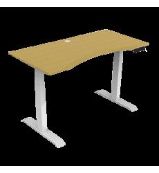 Furniture& Accessories